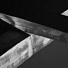 Timber Cross by brilightning