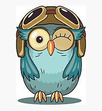 Owl with Pilot Cap and Goggles Photographic Print