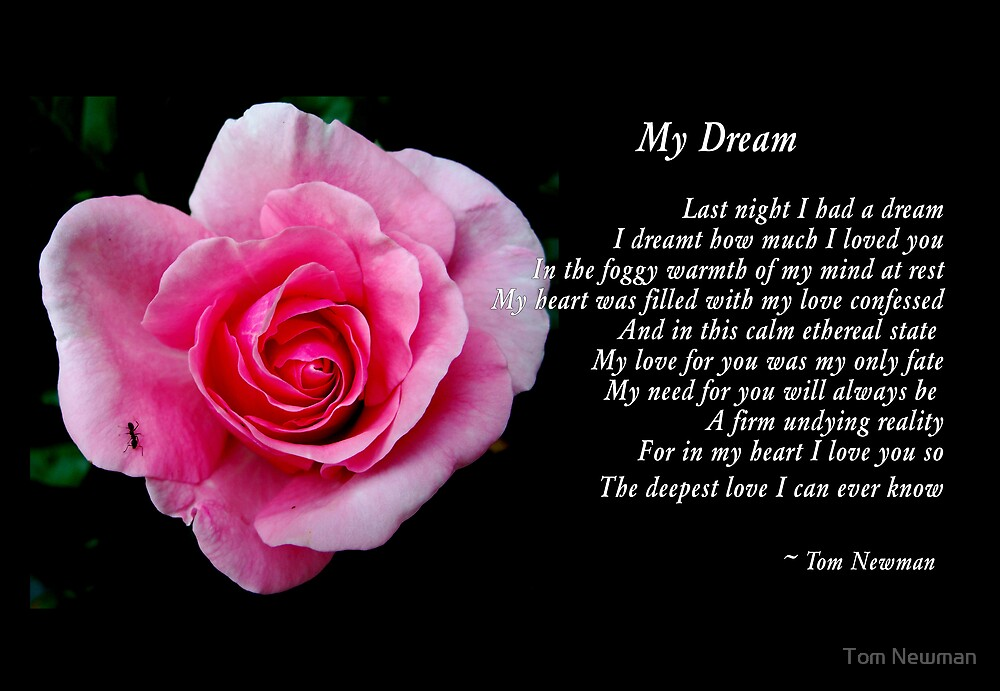 My Dream by Tom Newman