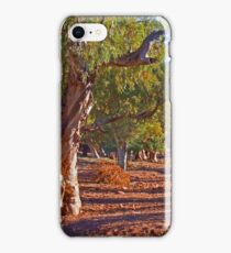 Red River Gums iPhone Case/Skin