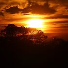 Brilliant Sky by Bob Hardy