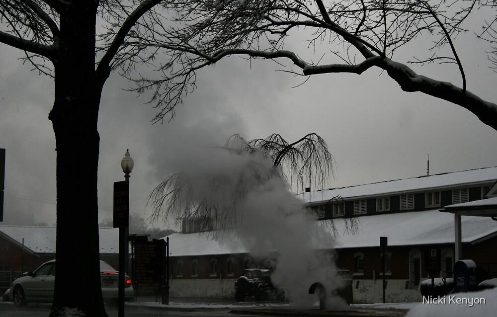 Steamy Ft. Myer by Nicki Kenyon