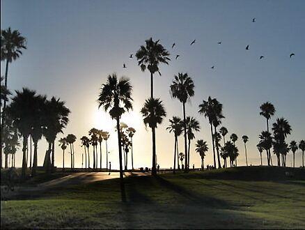 Venice Sunset by SoftParade