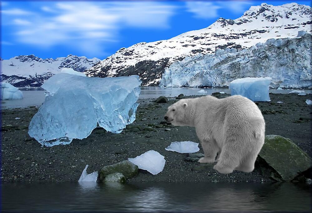 NA637-Ice, Ice Everywhere by George W Banks