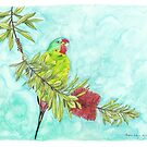 Swift Parrot on Bottlebrush by Meaghan Roberts