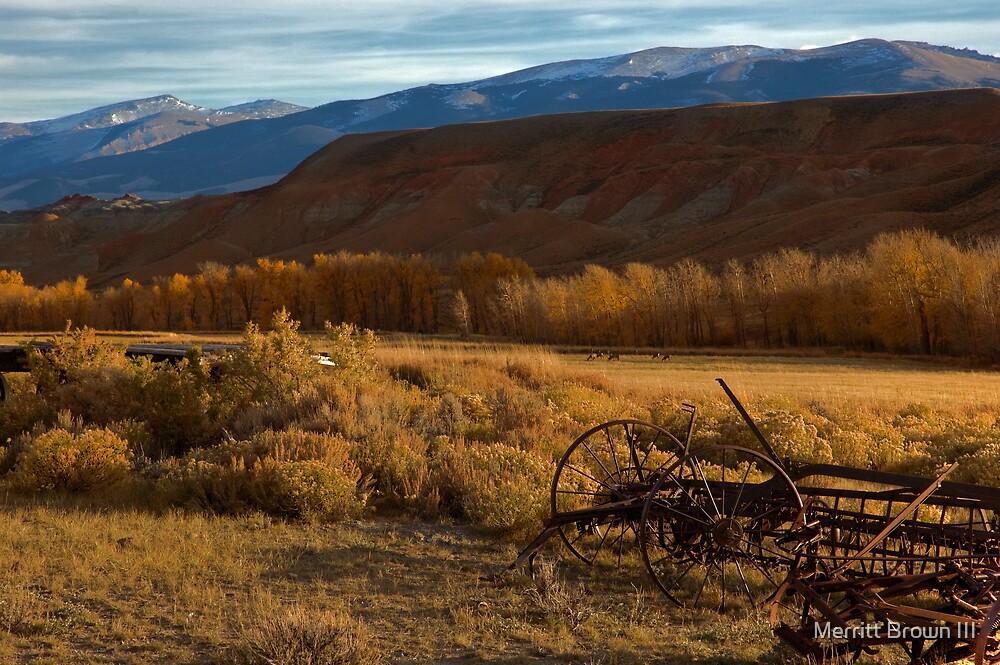 Horse Creek Rd. by Merritt Brown III