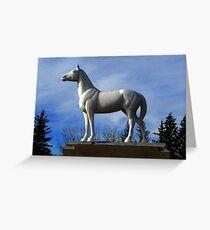 WHITE HORSE PLAINS  Greeting Card