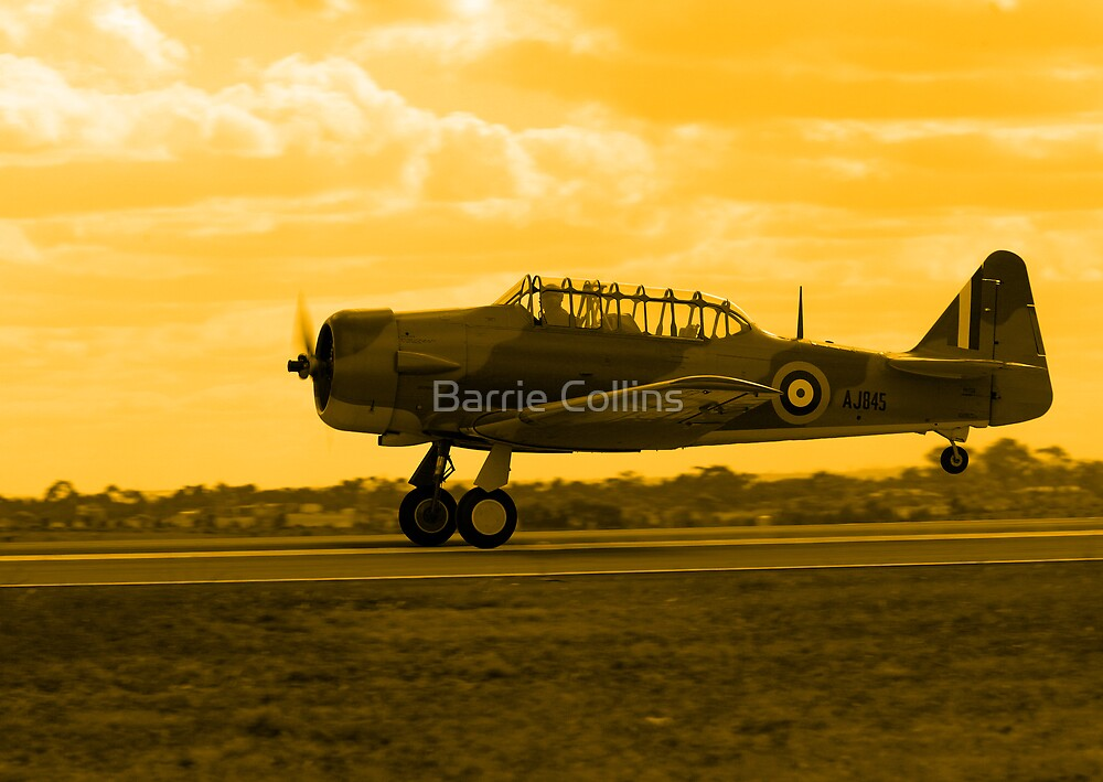 Early Morning Take Off by Barrie Collins