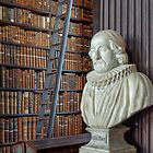 Bust and Books by TonyCrehan