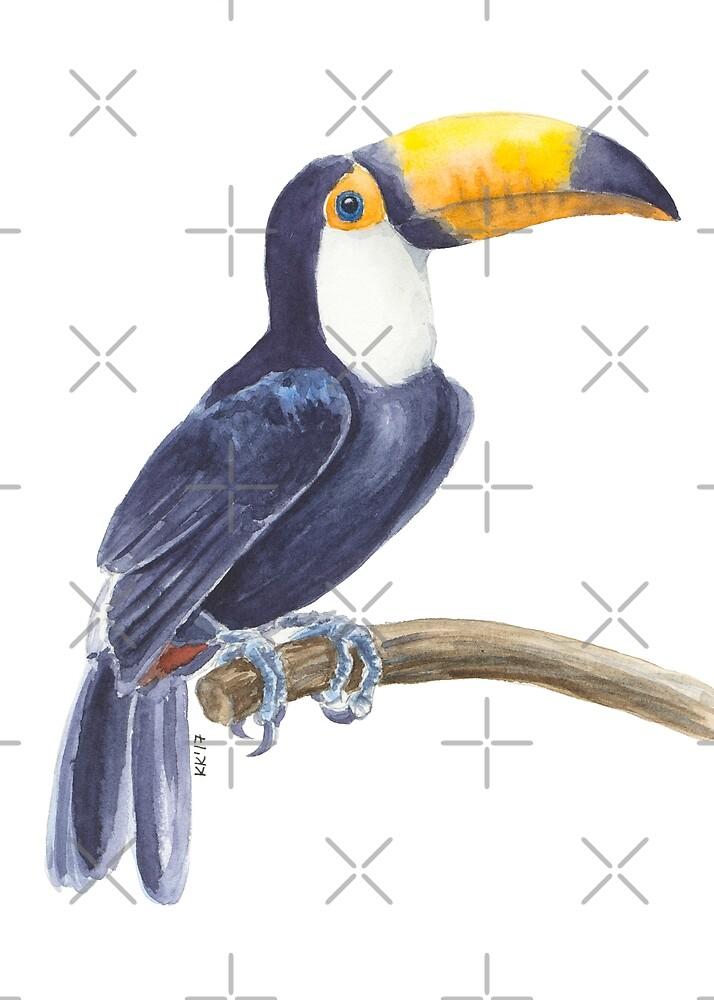 Toucan, tropical bird by Katerina Kirilova
