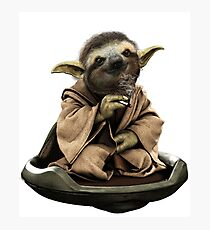 Inner Peace Sloth Yoda  Photographic Print