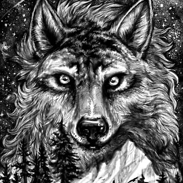 Wild Wolf Dark Mountain by carissalapreal