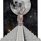 THE CAT by GloriaSanchez