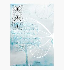 Butterfly Photographic Print