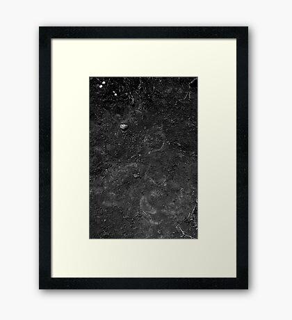 Soil Framed Print