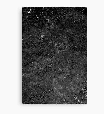 Soil Canvas Print