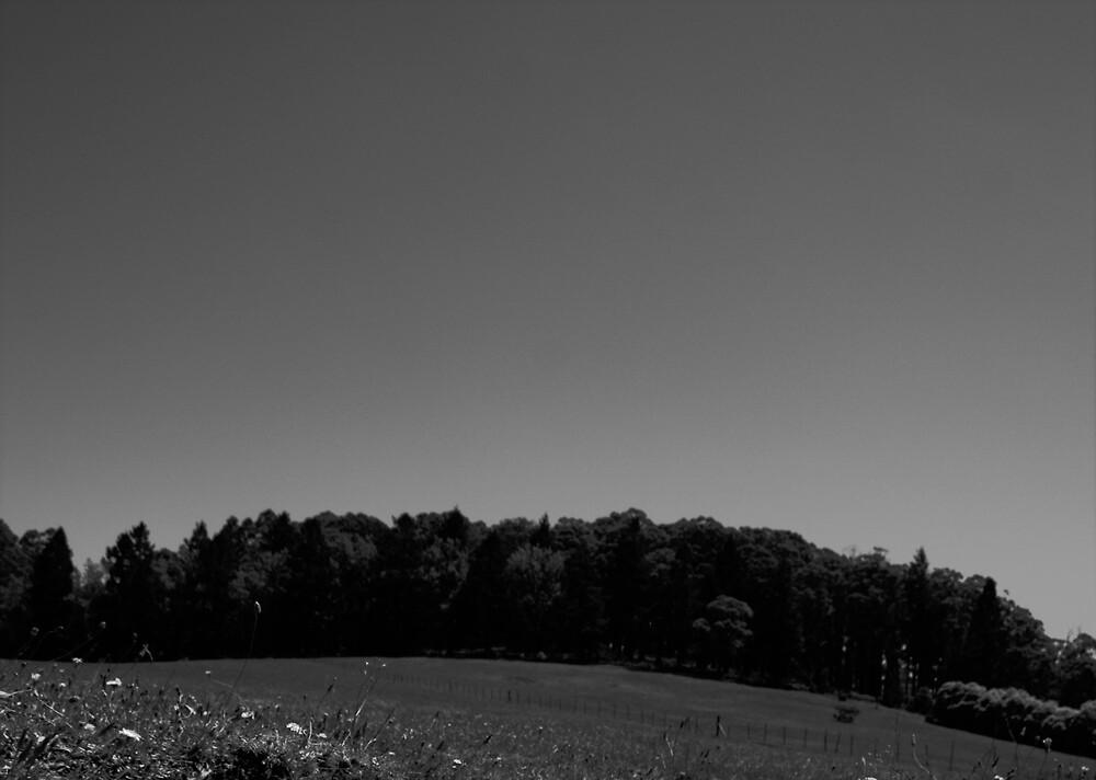Treeline by Jonathan Russell