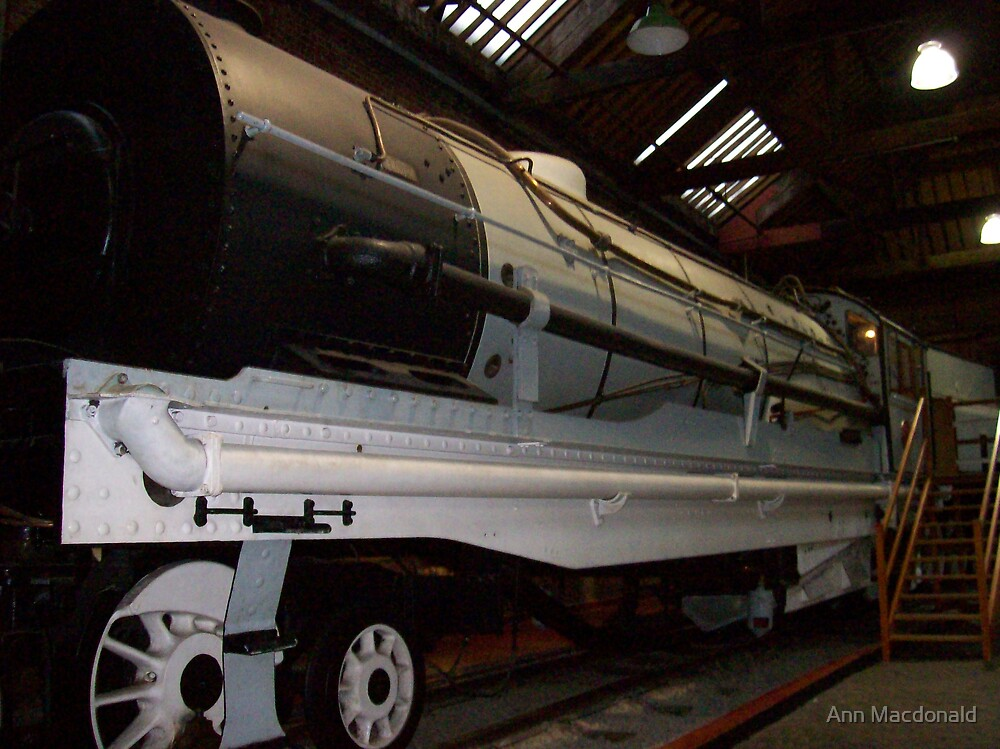 front of train by Ann Macdonald