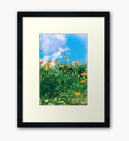 Thinking of you - Orange poppies Framed Print