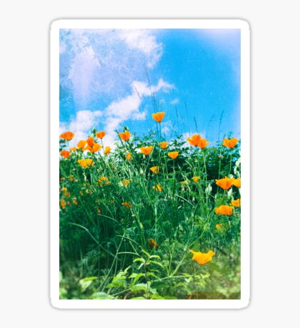Thinking of you - Orange poppies Sticker