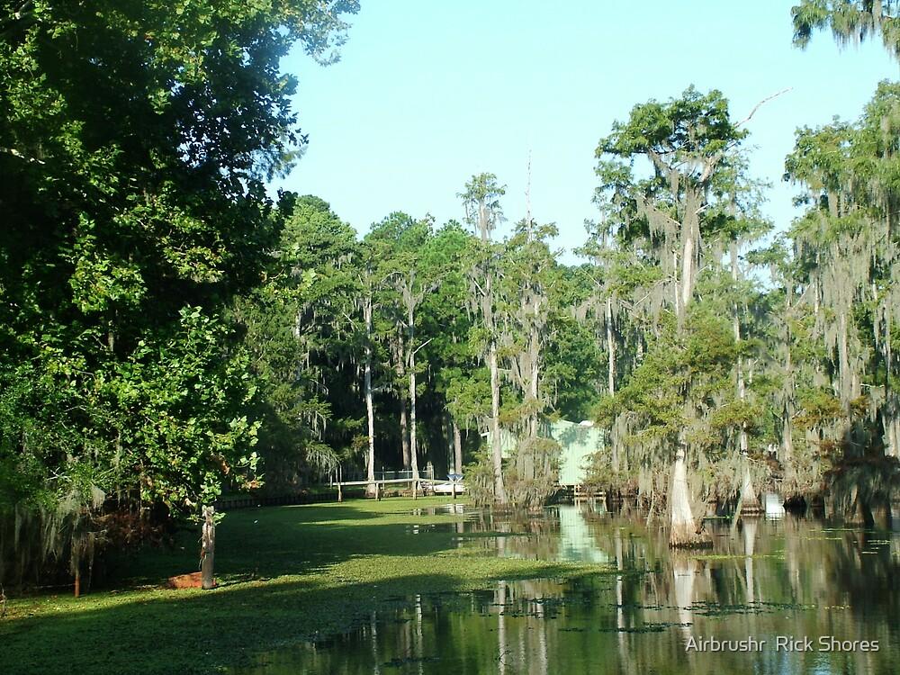 Louisiana by Airbrushr  Rick Shores
