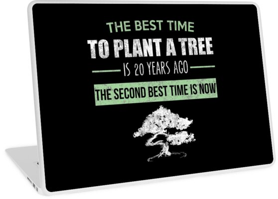 The Best Time To Plant A Tree Nature Lover Buddhist Quote Laptop