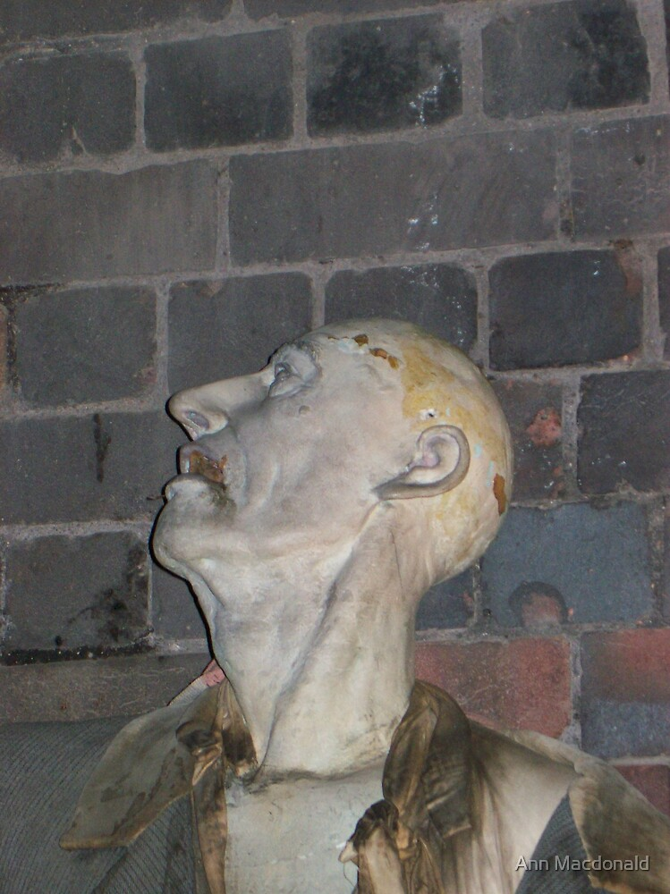 dummy by Ann Macdonald