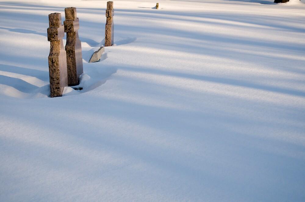 Snowfall by Geoffrey