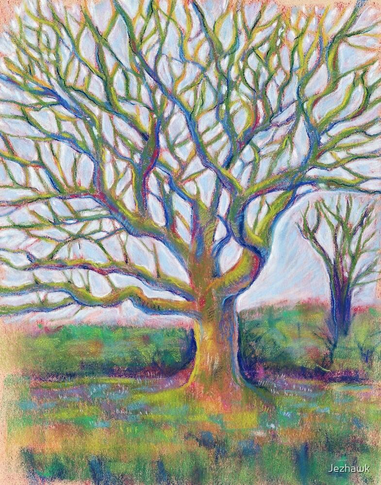 The Wandering Oak by Jezhawk