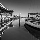 Sandringham Yacht Club   by Christine Wilson