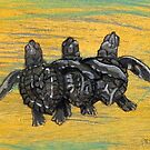Sea Turtle Art ... t50 by whiteygilroy