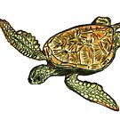 Sea Turtle Art ... t52 by whiteygilroy