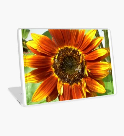 Bees on Red Sunflower Laptop Skin