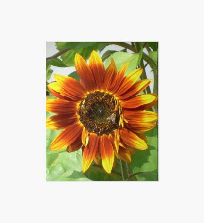 Bees on Red Sunflower Art Board