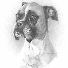 boxer dog memorial drawing by Mike Theuer