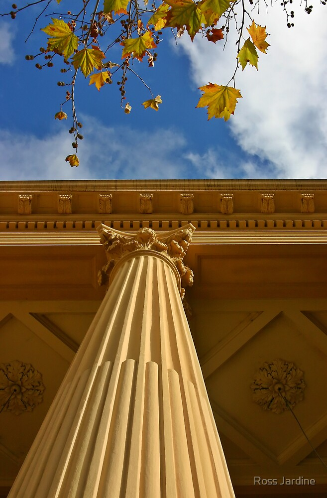 Autumn Column by Ross Jardine