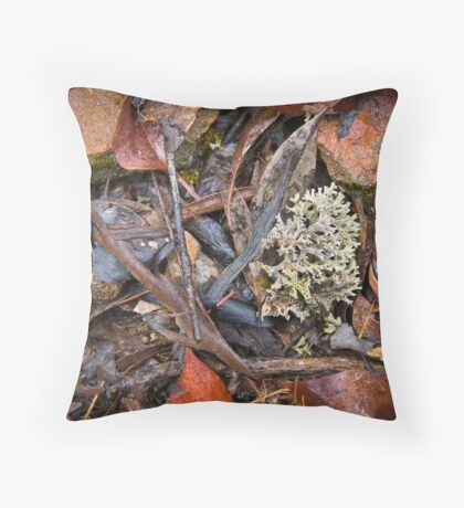 Bendigo Droughtbreaker #1 Throw Pillow