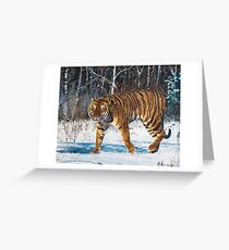 "Oil painting ""The tiger"" Greeting Card"