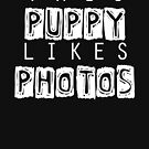 This Puppy Likes Photos by NerdyDoggo