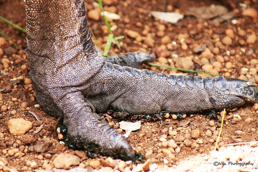 Ernie's Foot by Nix76