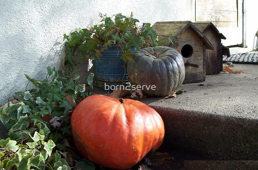 Ma's Front Porch by born2serve