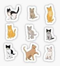 Pegatina Paquete de gato Baesic