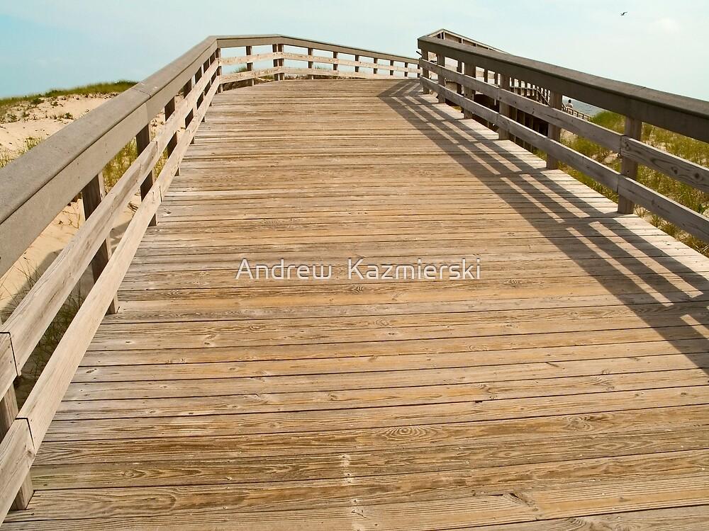 Beach Boardwalk by andykazie