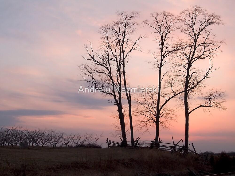 Battlefield Sunset by andykazie