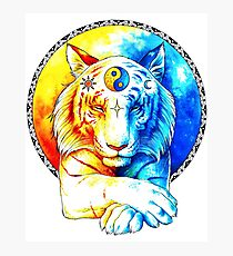 Zen Tiger Photographic Print