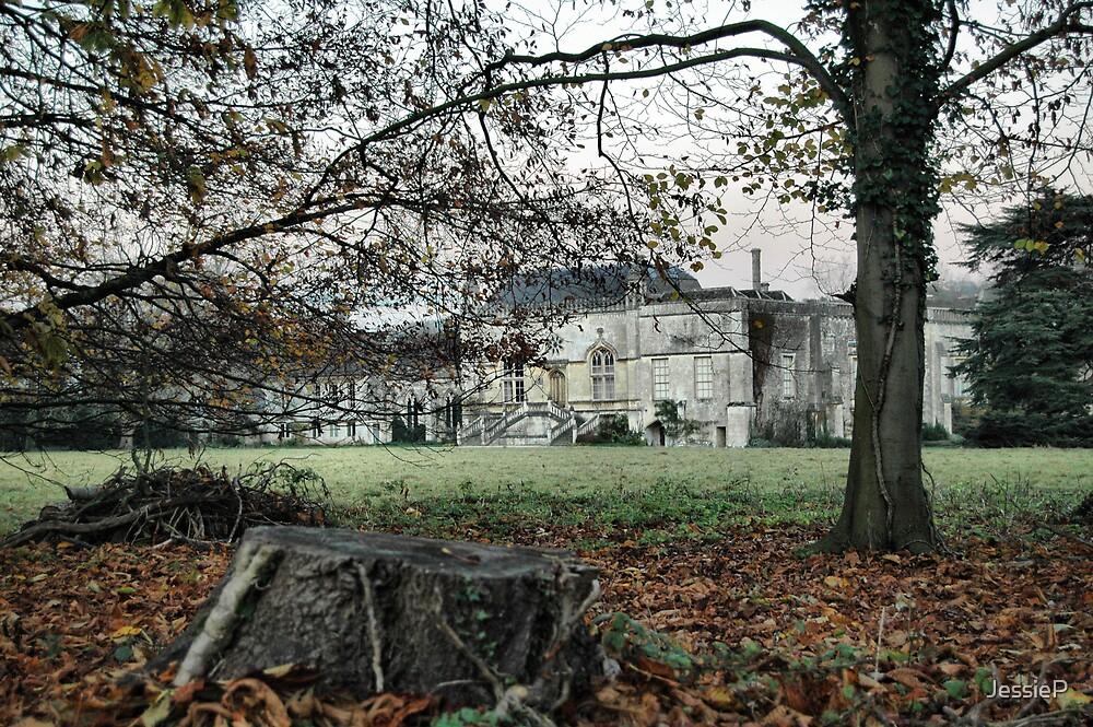 Lacock Abbey by JessieP