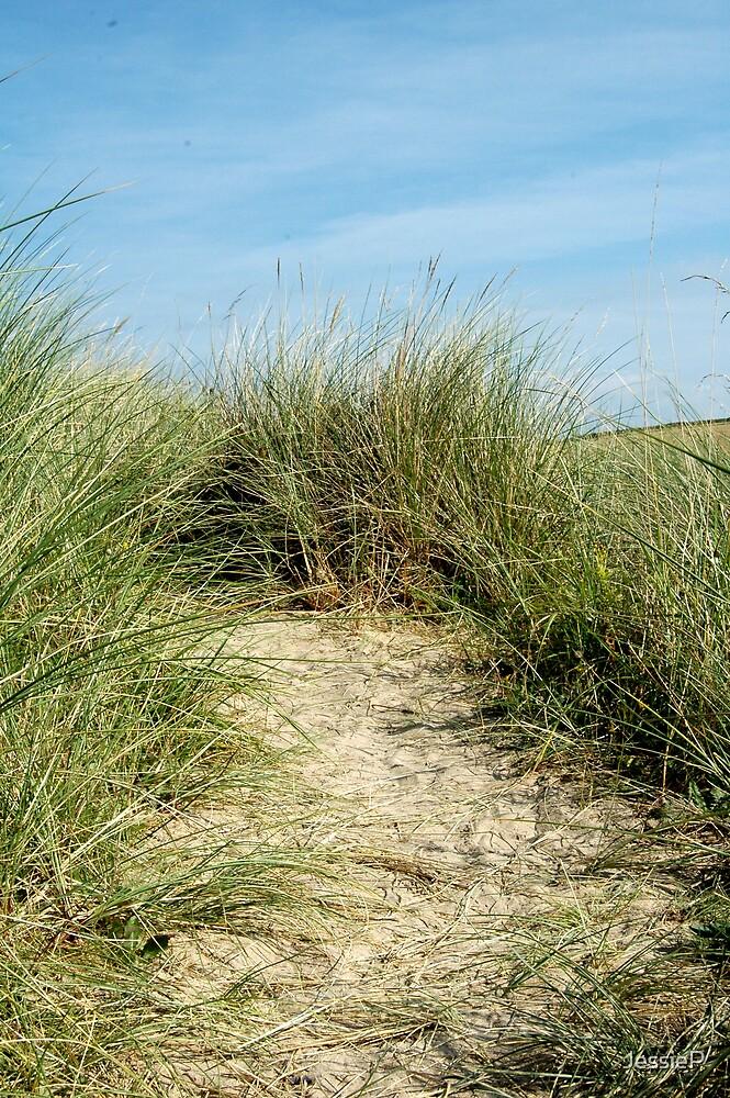 Grasslands by JessieP