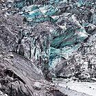 Fox Glacier 3 by Alex Preiss