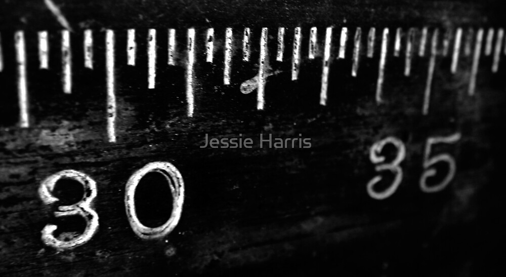 Measure by Jessie Harris
