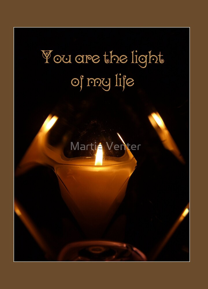 You Are the Light of My Life by Martie Venter